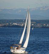 Segelboot auf dem Bodensee - Bodensee, Segelboot, Ferien, Segel, Wassersport, Urlaub