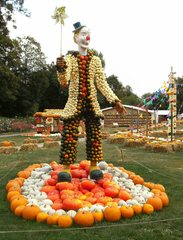 Kürbisdekoration #5 - Kürbis, Kürbisdekoration, Herbst, Clown, lustig, Zirkus, Kostüm, Spaß, Späße