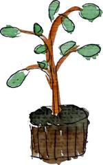 augere - wachsen, vermehren, Gesamtmasse vergrößern, Höhe, Breite, Länge, Masse, Größe, größer werden, Pflanze, Wachstum