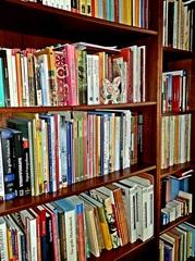 Bücherregal - Regal, Möbel, Bücherregal, Bücher, Buch, Buchdarstellung, stehen, lesen, Bücherei, Bibliothek, Einband, Bucheinband, Schule, Leseförderung, Illustration, Literatur, Wissen, Wissenserwerb, Schriften, Schrift, Druck, geschrieben, Schreibanlass, Lesestoff, Bücherschrank, Schrank, aufbewahren, Aufbewahrung, sortieren