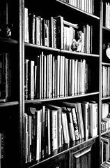 Bücherregal Ausschnitt sw - Regal, Möbel, Bücherregal, Bücher, Buch, Buchdarstellung, stehen, lesen, Bücherei, Bibliothek, Einband, Bucheinband, Schule, Leseförderung, Illustration, Literatur, Wissen, Wissenserwerb, Schriften, Schrift, Druck, geschrieben, Schreibanlass, Lesestoff, Bücherschrank, Schrank, aufbewahren, Aufbewahrung, sortieren
