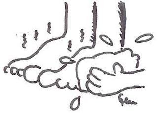 Fußwaschung - Zeremonie, Fuß, Füße, Fußwaschung, Waschung, Sauberkeit, Besuch, Besucher, Tradition, Gastfreundschaft, Freundschaft, Bibel, Willkommen