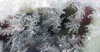 Eiskristalle - Winter, Frost, Eis, Wasser, Schnee, frieren, gefroren, Aggregatzustand, Anomalie, Eindruck, kalt, Impression, Jahreszeit, Licht, kalt, Kälte, winterlich, frostig, Schneekristalle, Detaiaufnahme, Kristall, Struktur, Eiskristall, Schneekristall