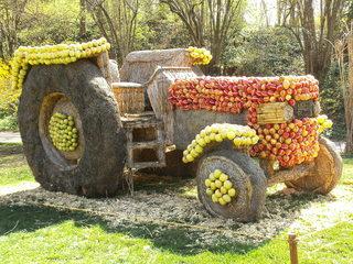Skulptur aus Stroh#4 - Skulptur, Stroh, Strohskulptur, Kunst, Kunstwerk, Traktor, Fahrzeug, Landwirtschaft
