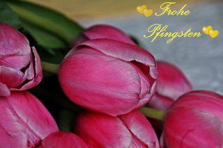 Pfingstgrüße - Freude, Frühling, Pfingsten, Grüße, Gruß, grüßen, Karte, schreiben, Tulpen, Fest, Tradition, Schreibanlass, Impuls, gestalten, Gestaltung, Feiertag