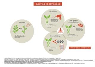 Züchtung, Gentechnik und Patente - Züchtung, Gentechnik, Patente, Entwicklungskosten Gentechnikpflanzen, Genome editing, Gen-Kanone, Gen-Transfer, Gen-Transfer mittels Bakterien