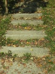 Steintreppe mit Blättern - Treppe, Blätter, Herbst, Laub, Laubfall, Herbstlaub, Weg, Symbol, Schreibanlass, Stufen, Meditation