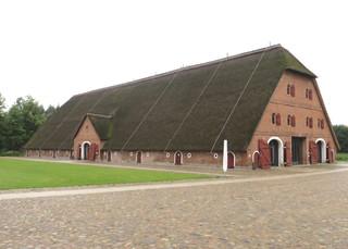 Reetdachscheune auf Gut Hasselburg # 1 - Architektur, Scheune, Landwirtschaft, Reet, Reetdach
