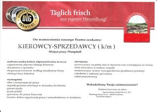 Flyer auf polnisch - Flyer, Flugblatt, Flugzettel, Handzettel, Werbung, Marketing, Druckerzeugnis, Publikation, Werbemittel