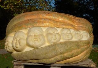 Geschnitzter Kürbis - Kürbis, Gemüse, Herbst, orange, Jahreszeit, schnitzen, Herbstdekoration