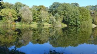 Still ruht der See - See, Ruhe, Einsamkeit, Stille, Spiegelung, Herbst, Wasser, Meditation, Seeufer