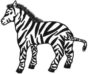 Zebra - Zebra, Huftier, Zeichnung, Muster, Streifen, gestreift, Fell, schwarz, weiß, Mähne, Huf, Anlaut Z, Wörter mit b, Afrika, Tier, Wildtier, Schwanz, Zoo, Tarnung, Steppe