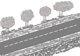 Straße - Straße, Bürgersteig, Fahrbahn, Mittelstreifen, Bäume, Baum, Verkehr, Anlaut S, Anlaut St, Wörter mit ß, Zeichnung, street, road, rue