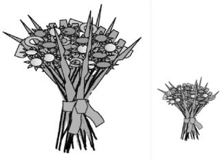 groß - klein - Strauß, Blume, Blumen, Blumenstrauß, Blüten, Geschenk, groß, klein, Wörter mit ß, Anlaut B
