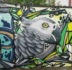 Graffiti  Papagei - Graffiti, Mauerbilder, Graffito, Bild, Kunstform, Wandmalerei, Papagei, Wildtier