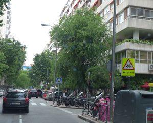 Verkehrssituation  - Verkehr, recuerde, Kinder, Vorsicht, Achtung