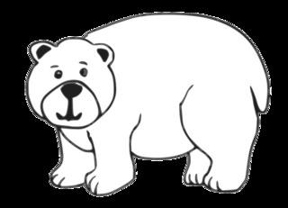 Bär - bear, Bär, Tier, braun, wild, Zoo, Wildtier, Wörter mit ä, Anlaut B, Braunbär, Eisbär
