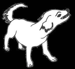 Hund - dog, Hund, Säugetier, Haustier, Anlaut H, Illustration
