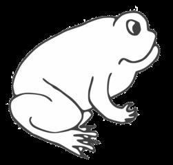 Frosch - frog, Frosch, Kröte, Teich, schwimmen, Anlaut F, Wörter mit sch, Amphibie, Tier, Illustration