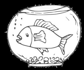 Goldfisch - goldfish, Fisch, Goldfisch, Haustier, Zierfisch, Aquarium, schwimmen, Wasser, Flossen, Anlaut G, Wörter mit sch