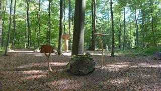 Bestattungswald 04 - terra levis, Friedhof, Grab, Gräber, Wald, vergänglich, Gesprächsanlass, Meditation, letzte Ruhe, Tod, sterben, Bestattungswald, Kreuz, Kanzel