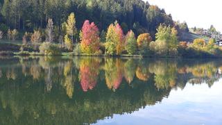 Herbstimpressionen 01 - Herbst, Jahreszeit, See, Stille, Ruhe, Meditation, See, Spiegelung, bunt, Gesprächsanlass, Verfärbung
