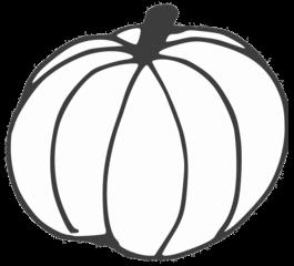 Kürbis - pumpkin, Kürbis, Gartenpflanze, Pflanze, Kürbisgewächs, Gemüsekürbis, Gartenkürbis, Anlaut K, Halloween