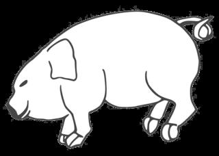 Schwein - pig, Schwein, Glücksschwein, Schweinchen, Ferkel, Bauernhof, Hoftier, Anlaut Sch, Glück, Glücksbringer, Silvester, Neujahr, Nutztier, Allesfresser, Kringelschwanz