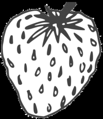 Erdbeere - strawberry, Erdbeere, Blütenpflanze, Frucht, Sammelnussfrucht, fragaria ananassa, Rosengewächs, Gartenerdbeere, Anlaut E