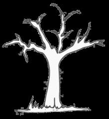 Baum - tree, Baum, Laubbaum, Baumstamm, Äste, Illustration, Anlaut B