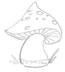Pilz - Pilz, Pilze, Wild, bunt, Wald, Handzeichung, heimisch, mushroom, einzeln, Anlaut P, Wörter mit z