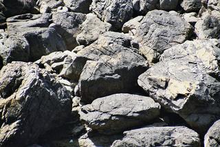 Schiefer - Schiefer, Felsen, Gestein, Felsbrocken, Natur, Sedimentgestein, grau