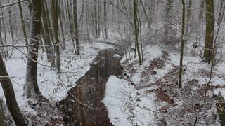 Winterstimmung #2 - Winterlandschaft, Winter, Schnee, kahle Bäume, Schneelandschaft, Kälte, Einsamkeit, Ruhe, Stille, Schreibanlass, Meditation, trüb, wolkig, Bach, Bachlauf