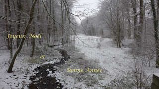 Weihnachtsgruß - französisch #1 - Joyeux Noël, Bonne Année