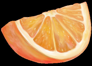 Orangenschnitz - Orange, Südfrucht, Zitrusfrucht, Obst, Frucht, Anlaut O, Apfelsine, Illustration, orange