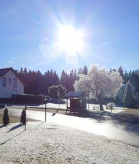 Winteridylle - Winter, Bäume, Weg, Meditation, Ruhe, Reif