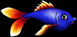 Fisch  - Fisch, schwimmen, Wasser, Tier, angeln, Unterwasser