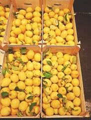 Zitronen - Zitrone, Zitronen, Verpackung, Verpackungseinheit, Zitrusfrucht, Citrone, Frucht, sauer, gelb, orange, Vitamin C, gesund, Ernährung, Frucht, Nahrungsmittel, Gewürz, Obst
