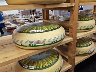 Pariser Großmarkt Rungis - Käsehalle - Käse, Milch, Milchprodukt, Markt, Rungis, Paris, Großmarkt, Frankreich, France, französisch, Emmentaler, Grundnahrungsmittel, Regal, Schnittkäse