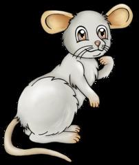 Maus - Maus, Nagetier, Nager, Tier, grau, fröhlich, Cartoon, Comic, Illustration