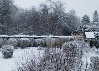 Winterstimmung im Garten - Winterstimmung, Garten, Schnee, Winterlandschaft, Winter, kahl, Baum Bäume, Schneelandschaft, Kälte, weiss, kalt, eisig, Neuschnee, verschneit, schneebedeckt, Einsamkeit, Ruhe, Stille, Schreibanlass, Meditation