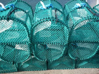 Fischreusen - Reuse, Fischreuse, Fischerei, Fischfang, Netz
