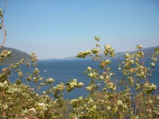 Loch Ness - Loch Ness, Nessie, See, Wasser, Schottland, Kaledonischer Graben, Caledonian Rift, Binnensee