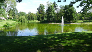 Parkanlage - Fontäne, Springbrunnen, Wasserspiele, Baumkulisse, Teichanlage, Strahl, hoch, Wasser, Parkanlage