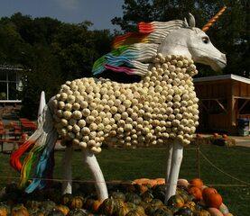 Skulptur aus Kürbissen Einhorn - Herbstdekoration, Kürbis, Einhorn, Fabelwesen, Fabeltier, Horn, Stirnmitte, Symbol für das Gute, Mythologisches Pferd