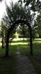 Weidentor - Weide, Zweige, Tor, offen, verschlossen, Durchgang, Eingang, Schreibanlass, Fantasie, Tür, Meditation, Symbol
