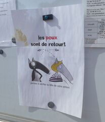 Hinweisschild: Poux - poux, retour, vérifier, tête, enfant