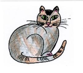 Katze - Katze, Haustier, Anlaut K, Illustration, Wörter mit tz, sitzen