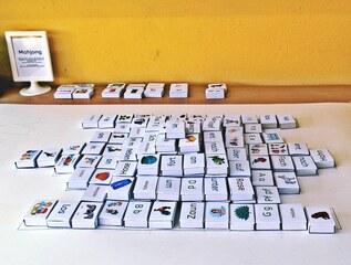 Mahjong #3 - Mahjong, Deutsch, spielen, Spiel, Sprachspiel, merken, kombinieren, Kombination, finden, Sprachtherapie, Lernspiel, taktil, Wortschatzerweiterung, uben, LRS-Förderung, fördern, Grundwortschatz