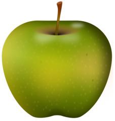 grüner Apfel - Apfel, Obst, Frucht, Kernobstgewächs, Rosengewächs, grün, Anlaut A, Wörter mit pf, Illustration